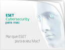 ESET Cybersecurity Consumer Brochure